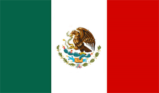 Encuestas remuneradas Mexico