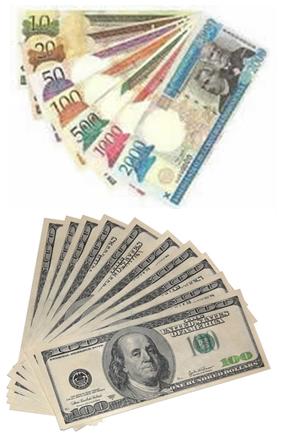 http://www.encuestasremuneradas.cc/wp-content/uploads/2012/12/moneda-republica-dominicana-dolares.png